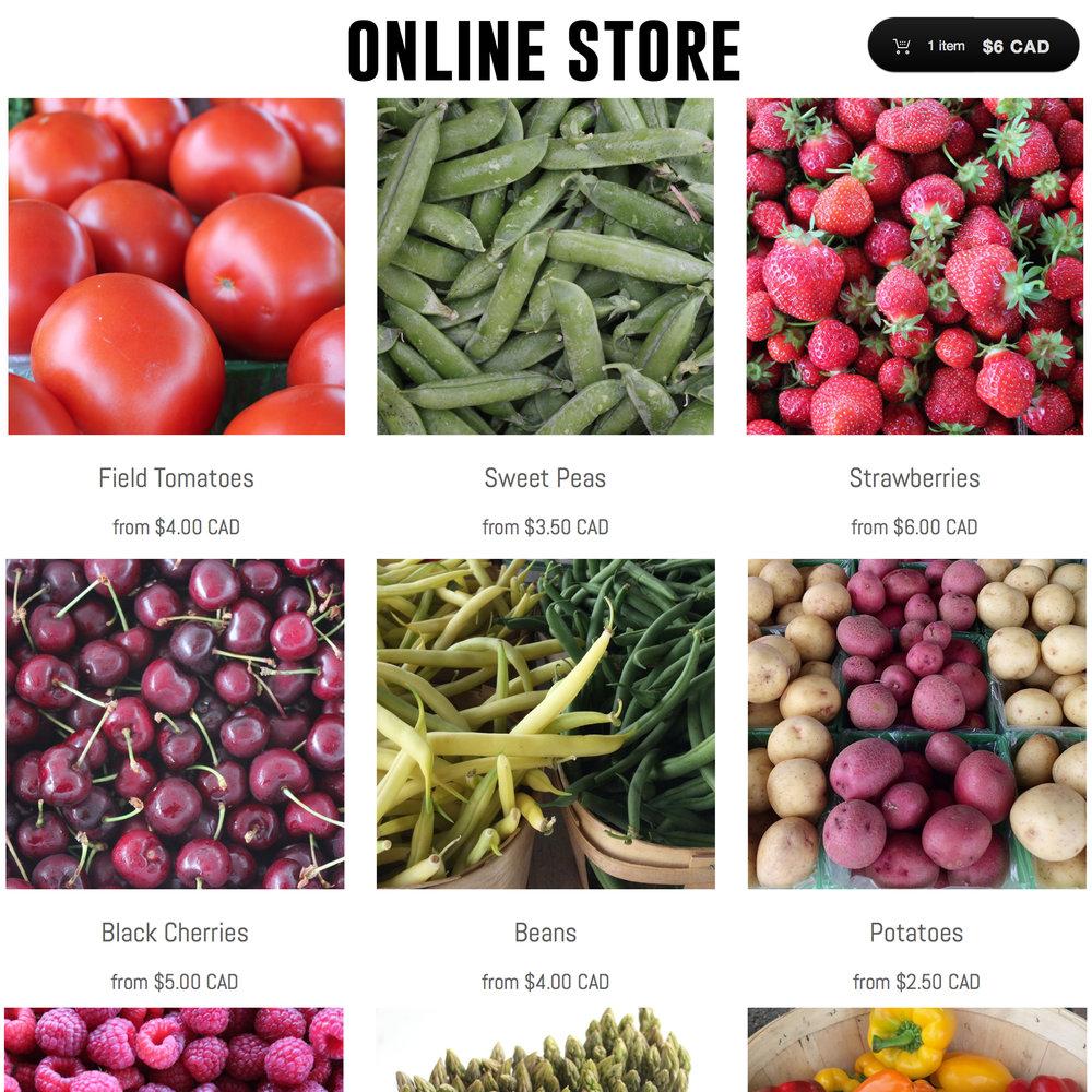 online store 3.jpg