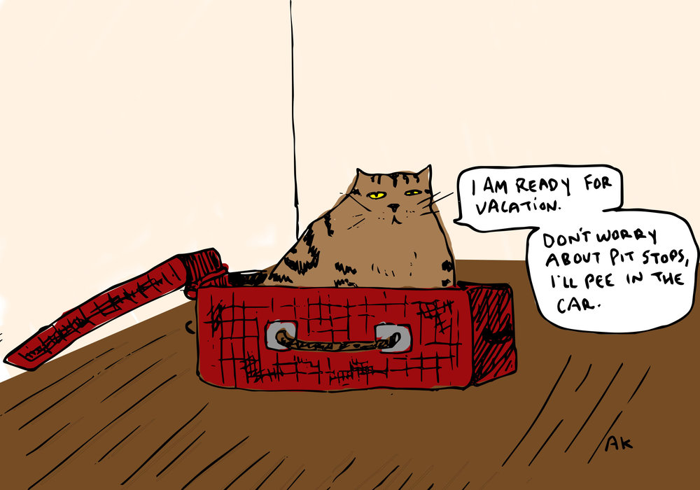 catw.jpg