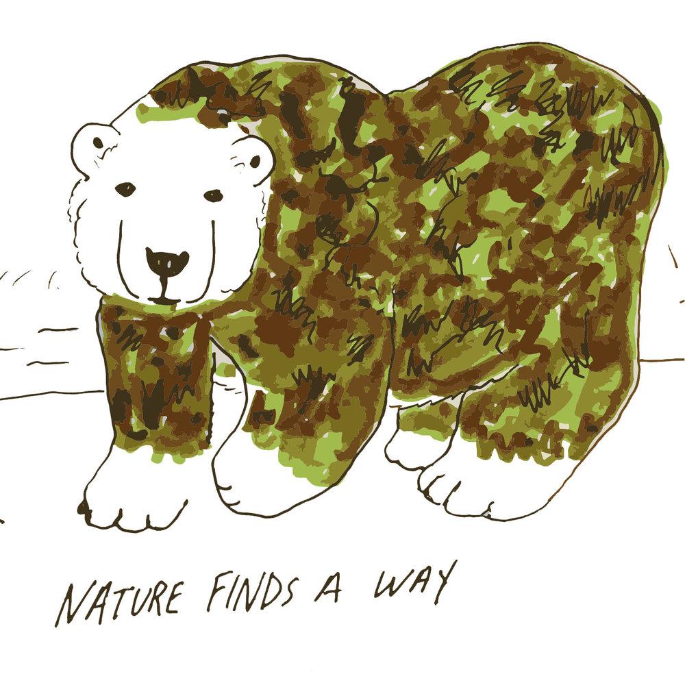 bear marker.jpg