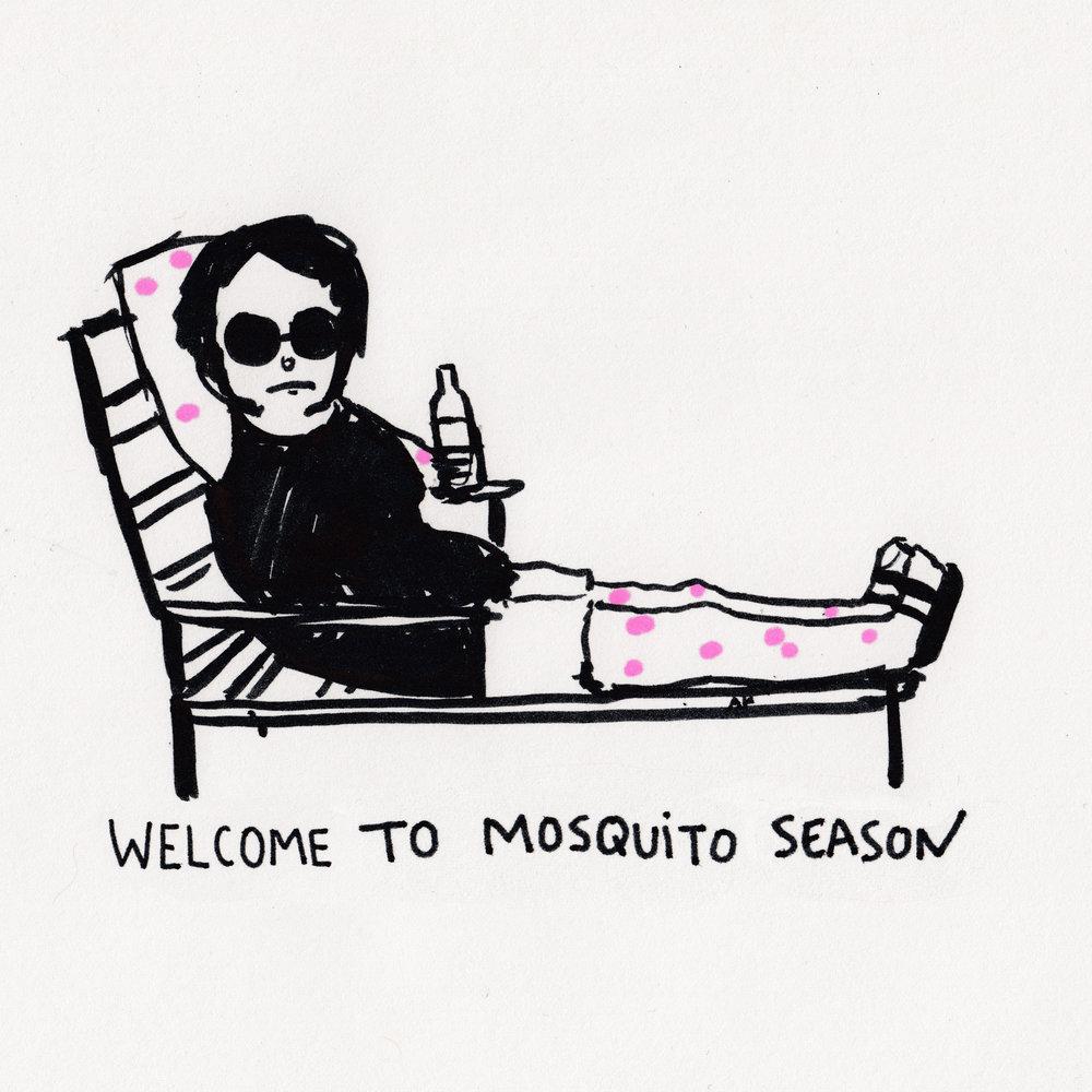 mosquito season.jpg