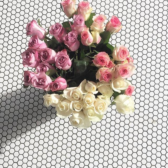 hump day blooms via @elena_harrington 🌸