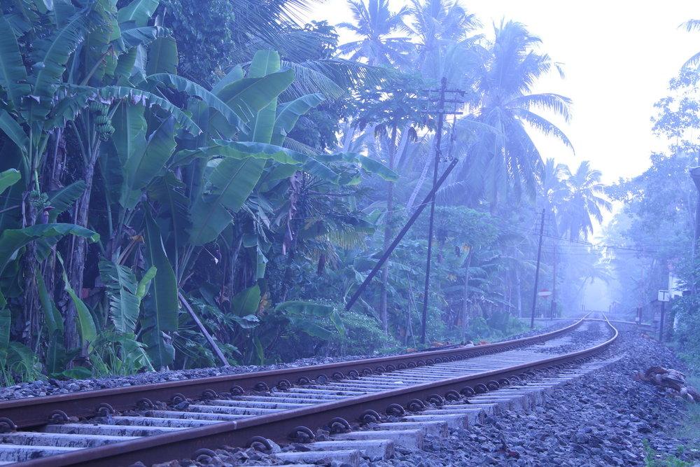 The famous southern railway of Sri Lanka