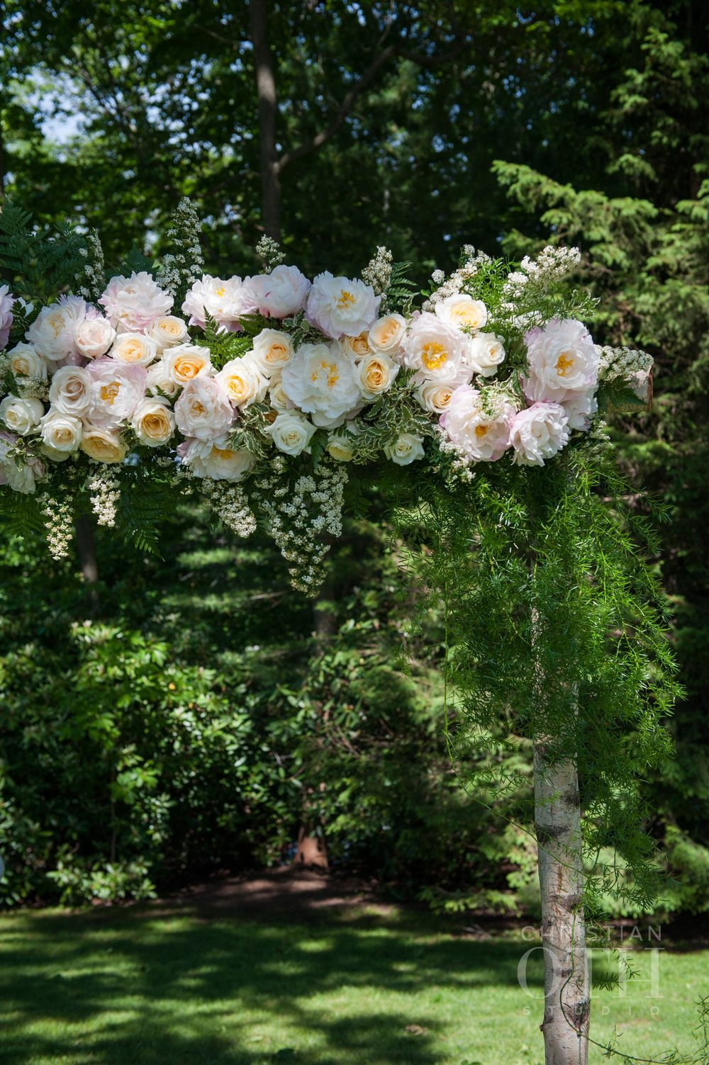 Ceremony arch birch wood and garden roses