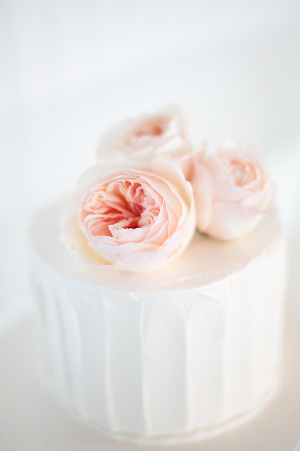 Juliet roses on wedding cake