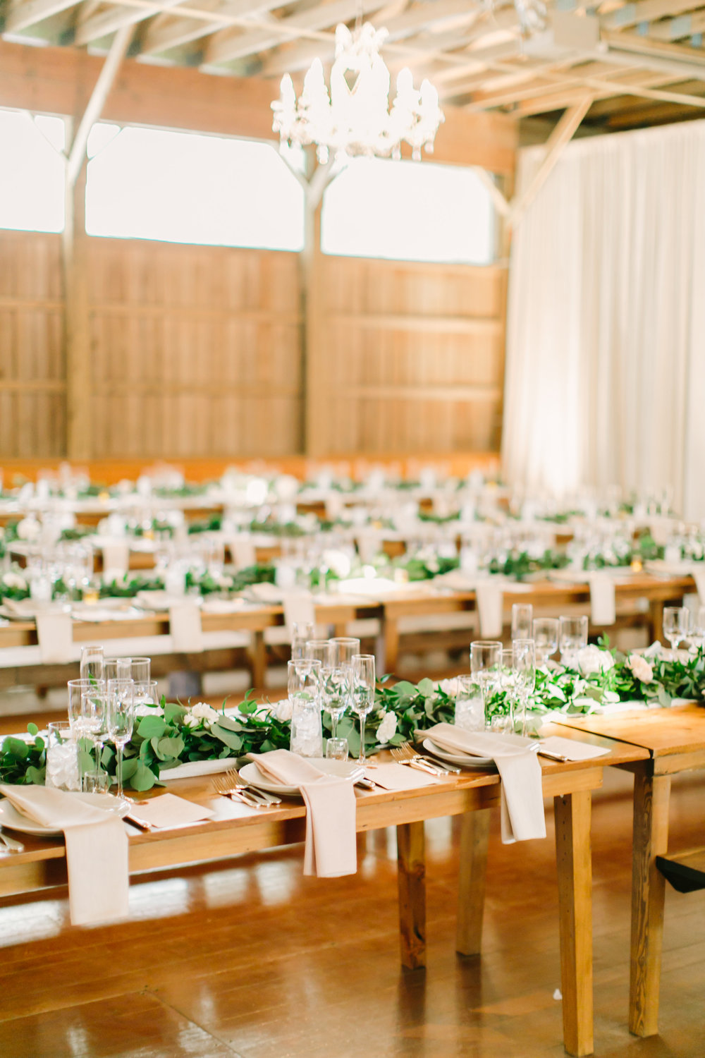Long tables in horse stable