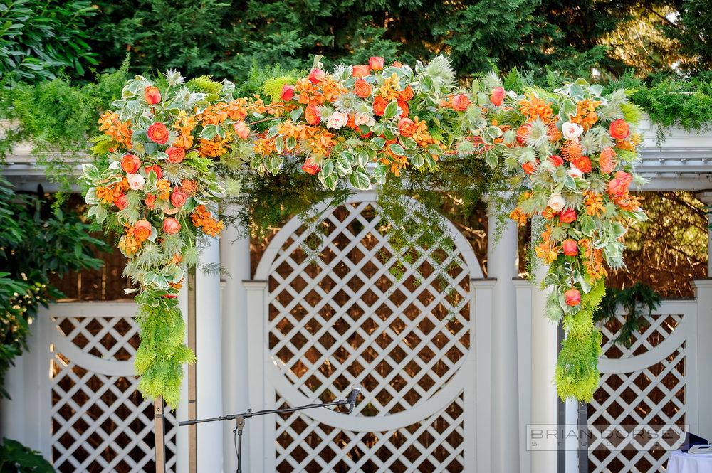 Bright orange flower chuppuh