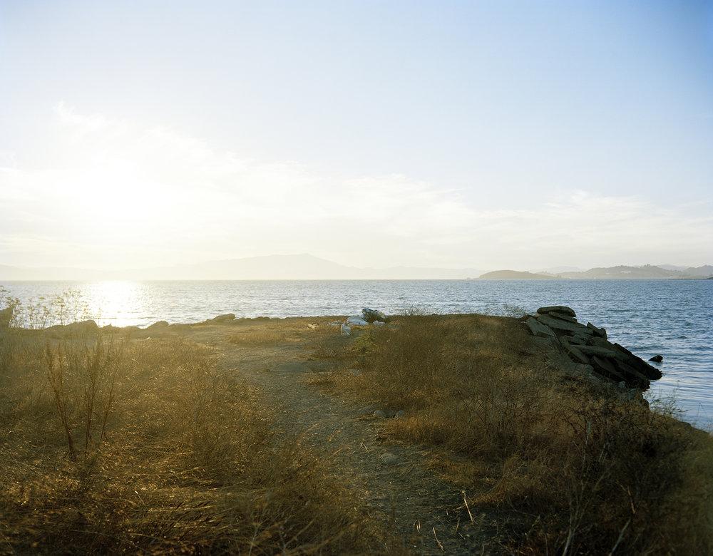Bayside Landscape