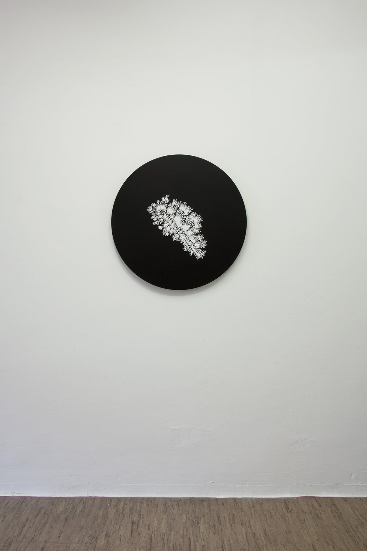 Dendrite, 2013, , acrylic on canvas, 80 x 80 cm