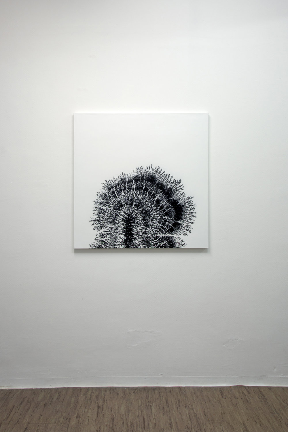 Dendrite, 2013, acrylic on canvas, 100 x 100 cm