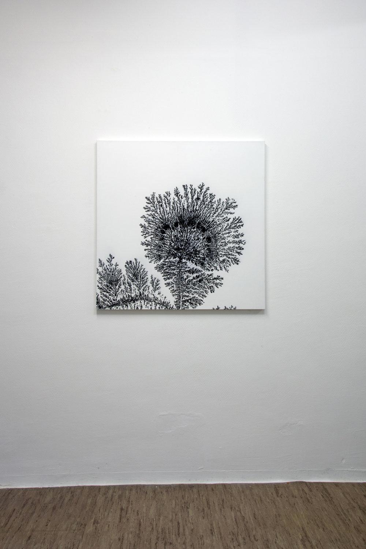 Dendrite, 2013, acrylic on canvas, 100 x 100 cm