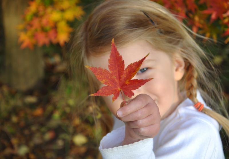 p with leaf.JPG