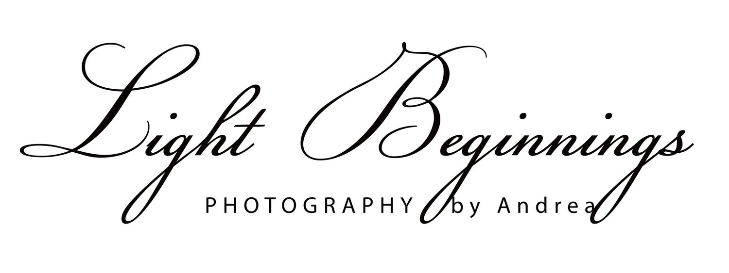 Light Beginnings Photography LLC.
