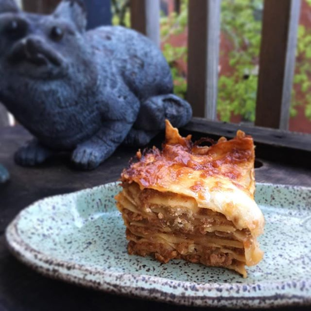 #dinner is served! :) I was a bit worried my raccoons won't eat the #lasagna because it's very different from what they are used to, but they loved it! Yay!#homemadepasta #bolognese #おうちごはん #ラザニア #パスタ