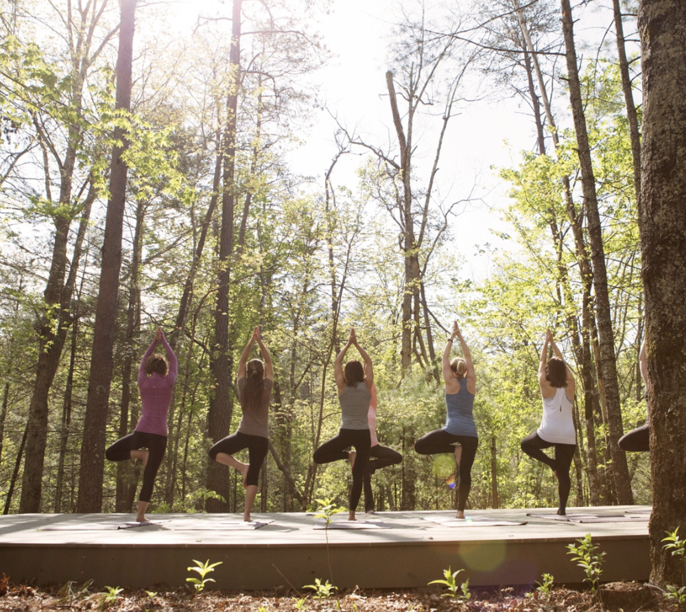 Reconnect with a Deep Healing Woods yoga session with  The Wellhouse at Blackberry Farm . Image:  beall + thomas photography