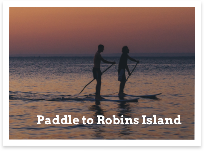paddle1.png