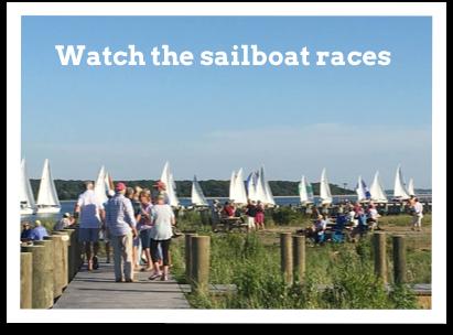sailboatraces1.png