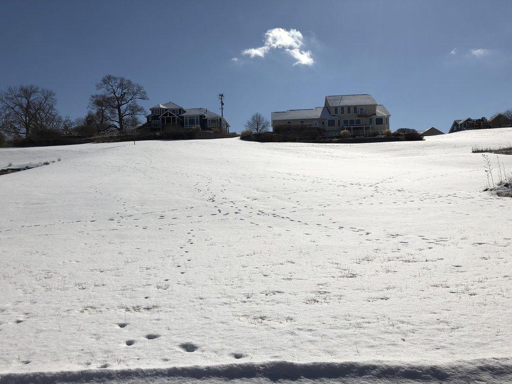 Awesome Sledding Hill