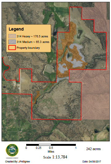 Sample stand density map (click to enlarge)