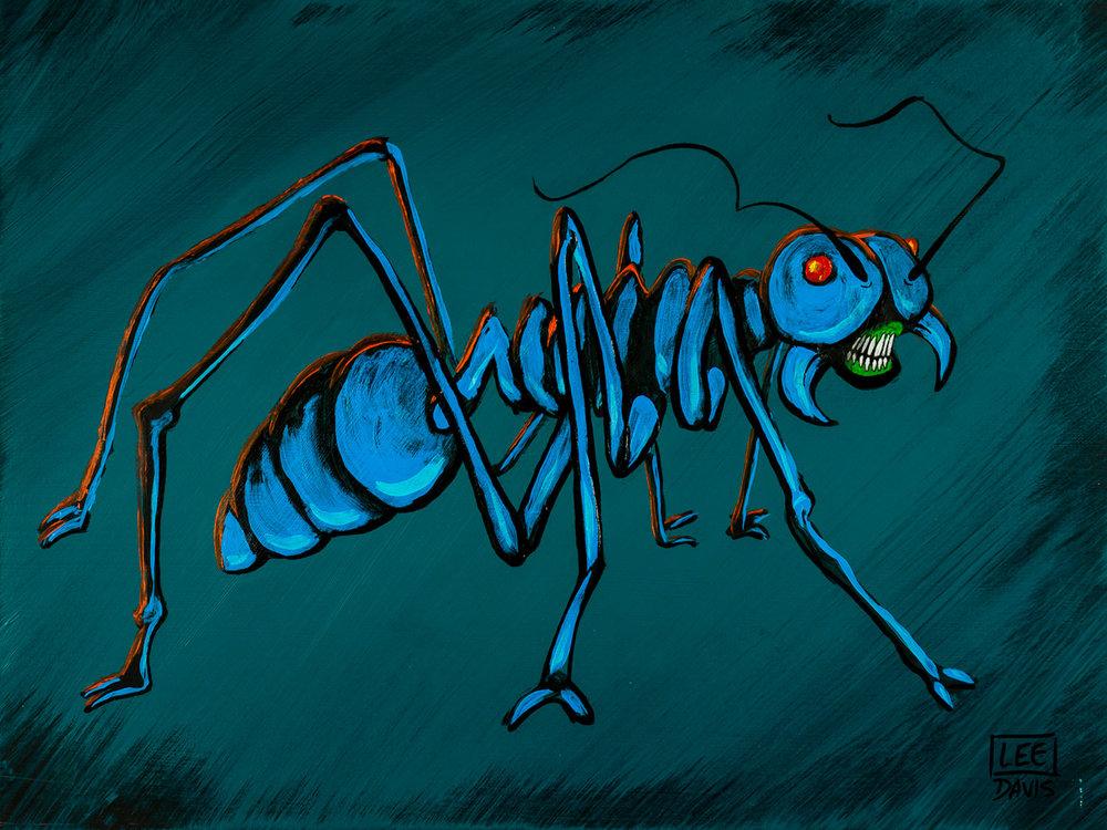 Cryptococcus Ant