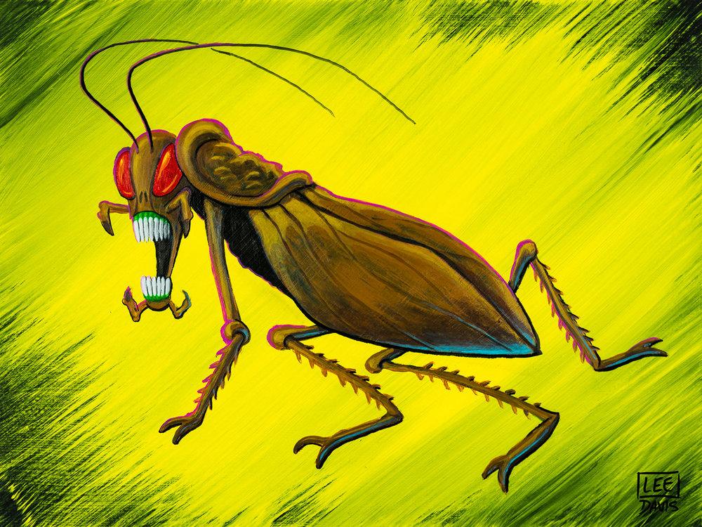 Cryptococcus Cockroach