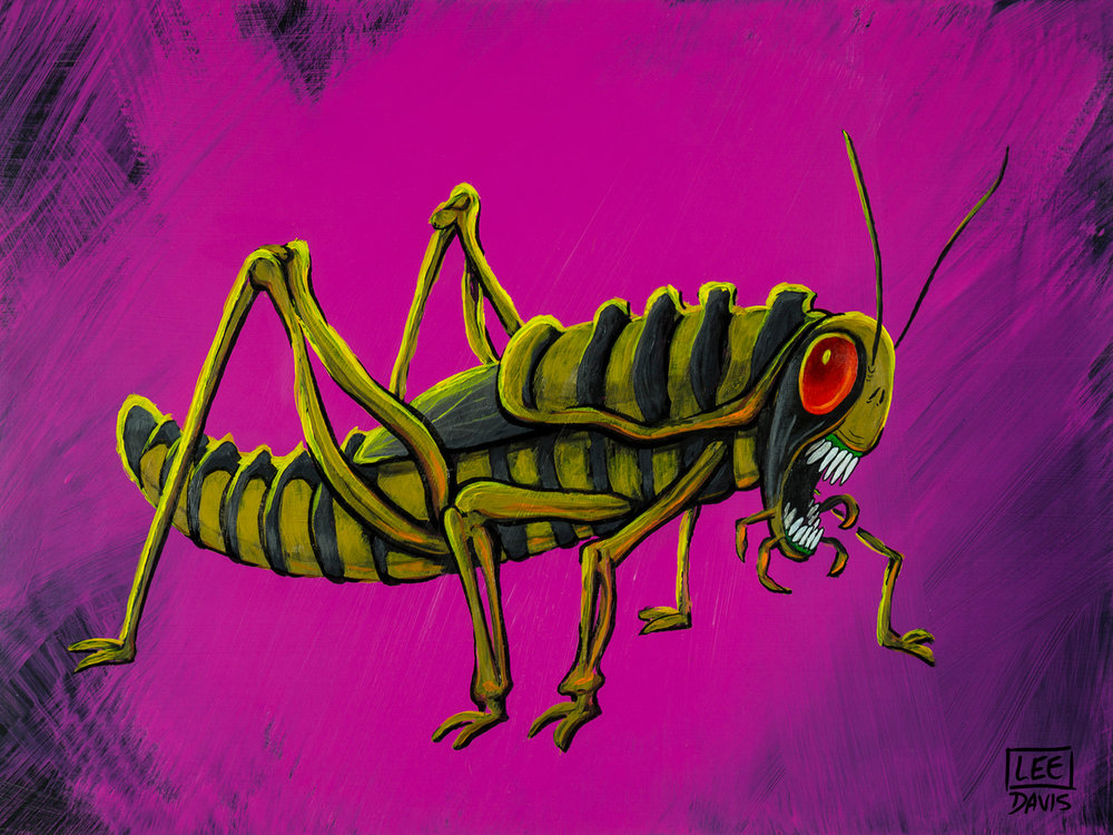 Cryptococcus Grasshopper