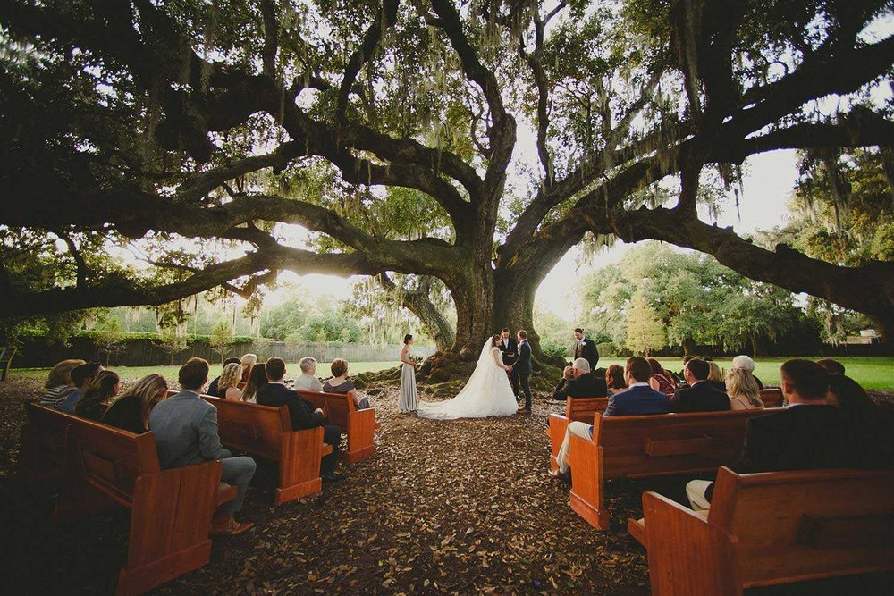 audubon-tree-of-life-wedding-new-orleans+(17).jpg