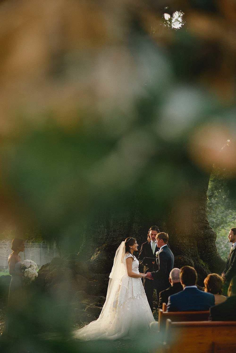 audubon-tree-of-life-wedding-new-orleans+(21).jpg