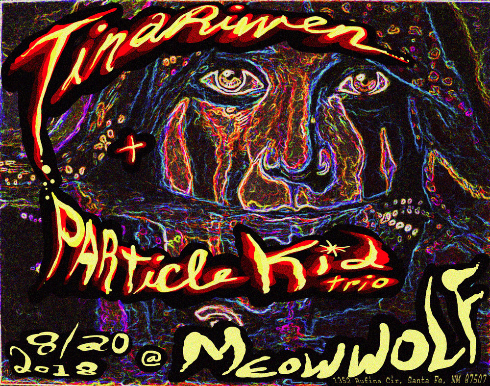 tinariwen_particlekid_meowwolf_2.jpg