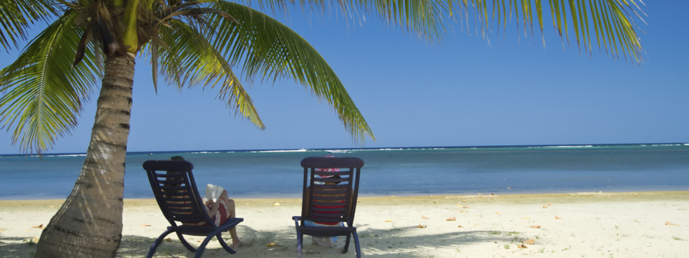Two people sitting on the beach next to a palm tree