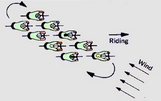 Cyclists know what I'm talking about - this is called an echelon formation.