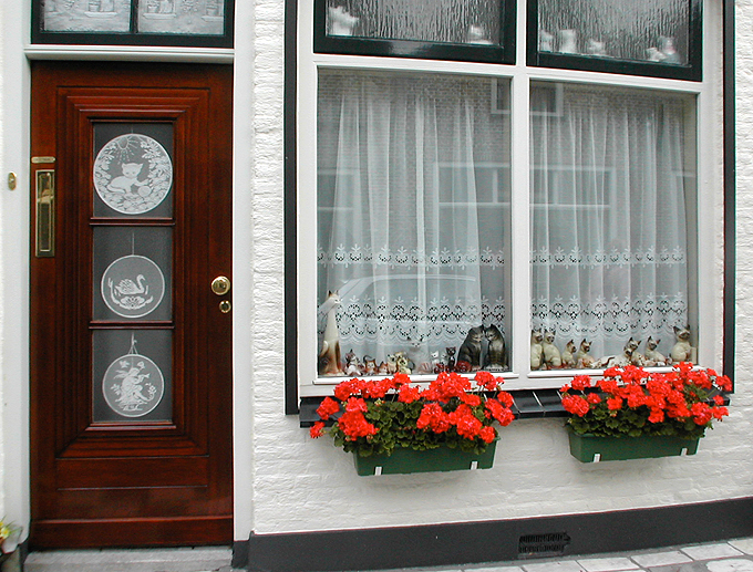holland1.jpg