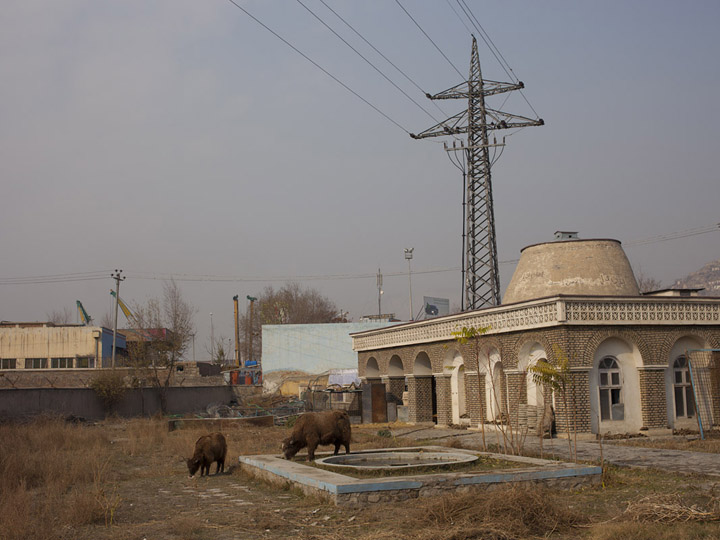 Kabul Zoo