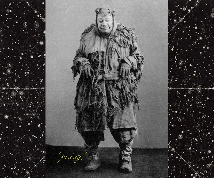 1908pig.jpg