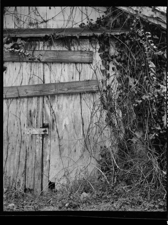 shed_savannah_Final_1.jpg