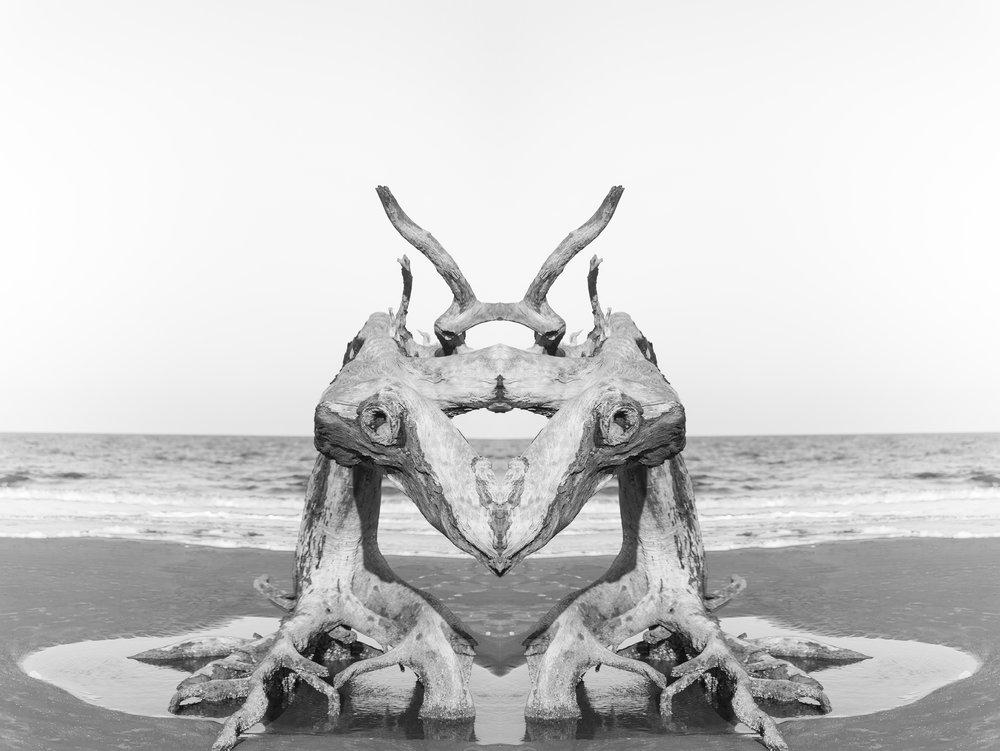 Mirror_monster.jpg