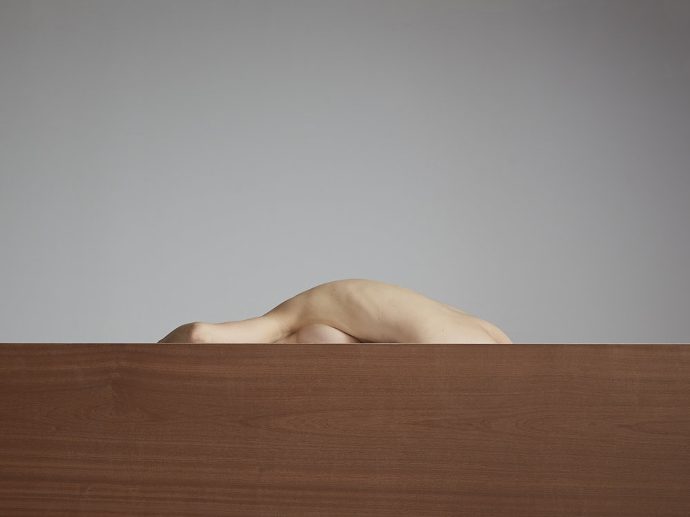 Segmented Body with Walnut  2014