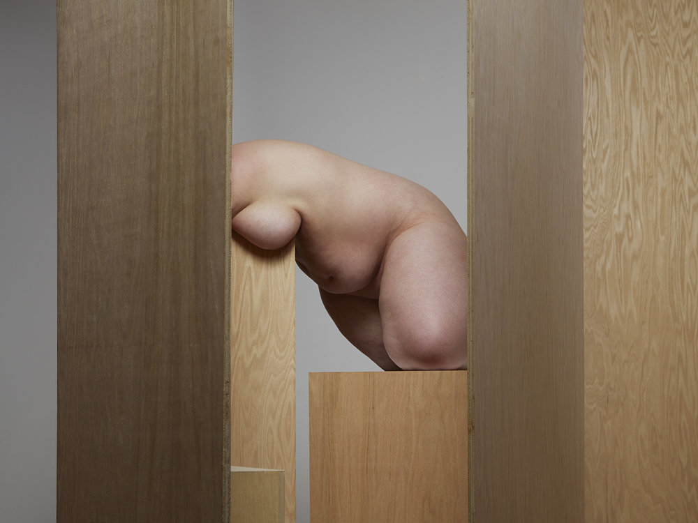 Segmented Body with Various Plywood  2014