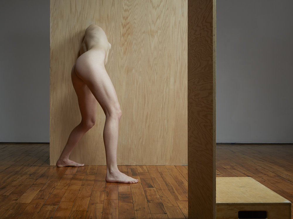 Segmented Body with Plywood and Apple Box  2014
