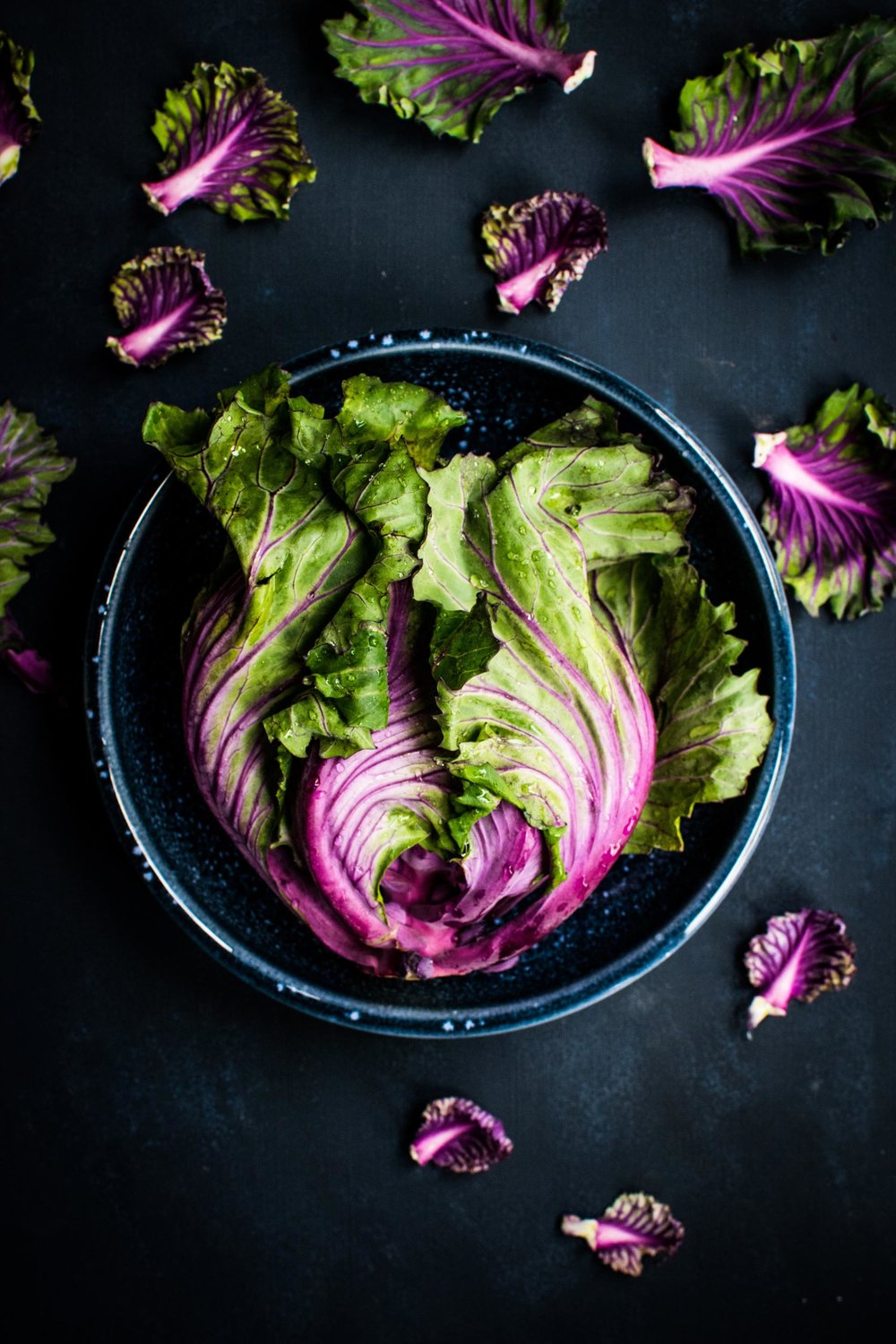Eastwise-Cabbage.jpg