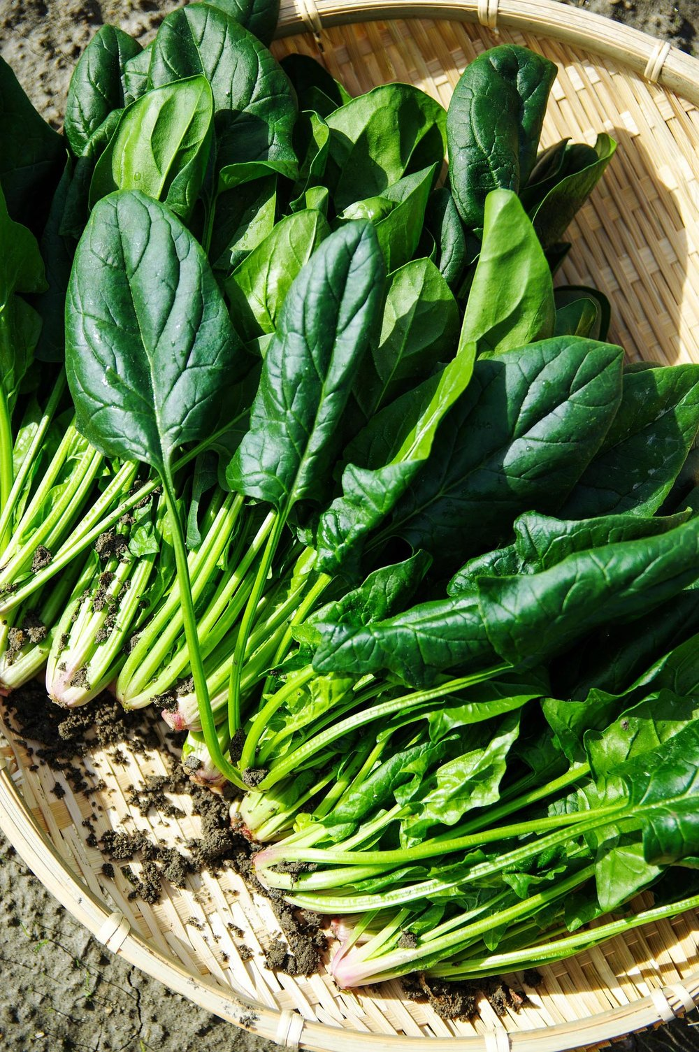 Eastwise-Spinach.jpg