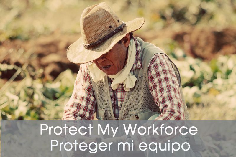 ProtectMyWorkforce.jpg