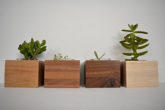 Succulent Planters.jpg