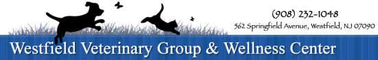 Westfield Veterinary Group and Wellness Center provides complete veterinary care to pets, including dogs, cats, and exotic pets. We offer comprehensive pet wellness care, boarding and grooming for dogs and cats, canine physical rehabilitation, veterinary surgical care and advanced diagnostics.   www.westfieldvetgroup.c   Westfield Veterinary Group and Wellness Center 62 Springfield Avenue Westfield, NJ 07090  Phone: 908-232-1048
