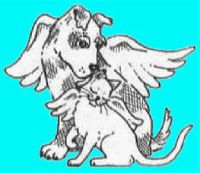 Angel Paws  490 Inman Ave. Colonia, NJ 07067 (732) 340-1199   http://www.angelpaws.org