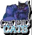 Capic Cats  6 Bell Avenue Raritan, NJ 08869  Email form    www.capiccats.com