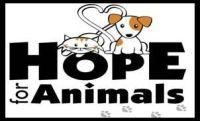 Hope for Animals  PO Box 144 Marlboro, NJ 07746 732-549-1270     http://www.petfinder.com/shelters/NJ405.html