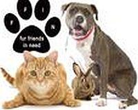 Fur Friends In Need Hazlet NJ 07730 732-829-1426 imavegge@aol.com http://www.furfriendsinneed.com/