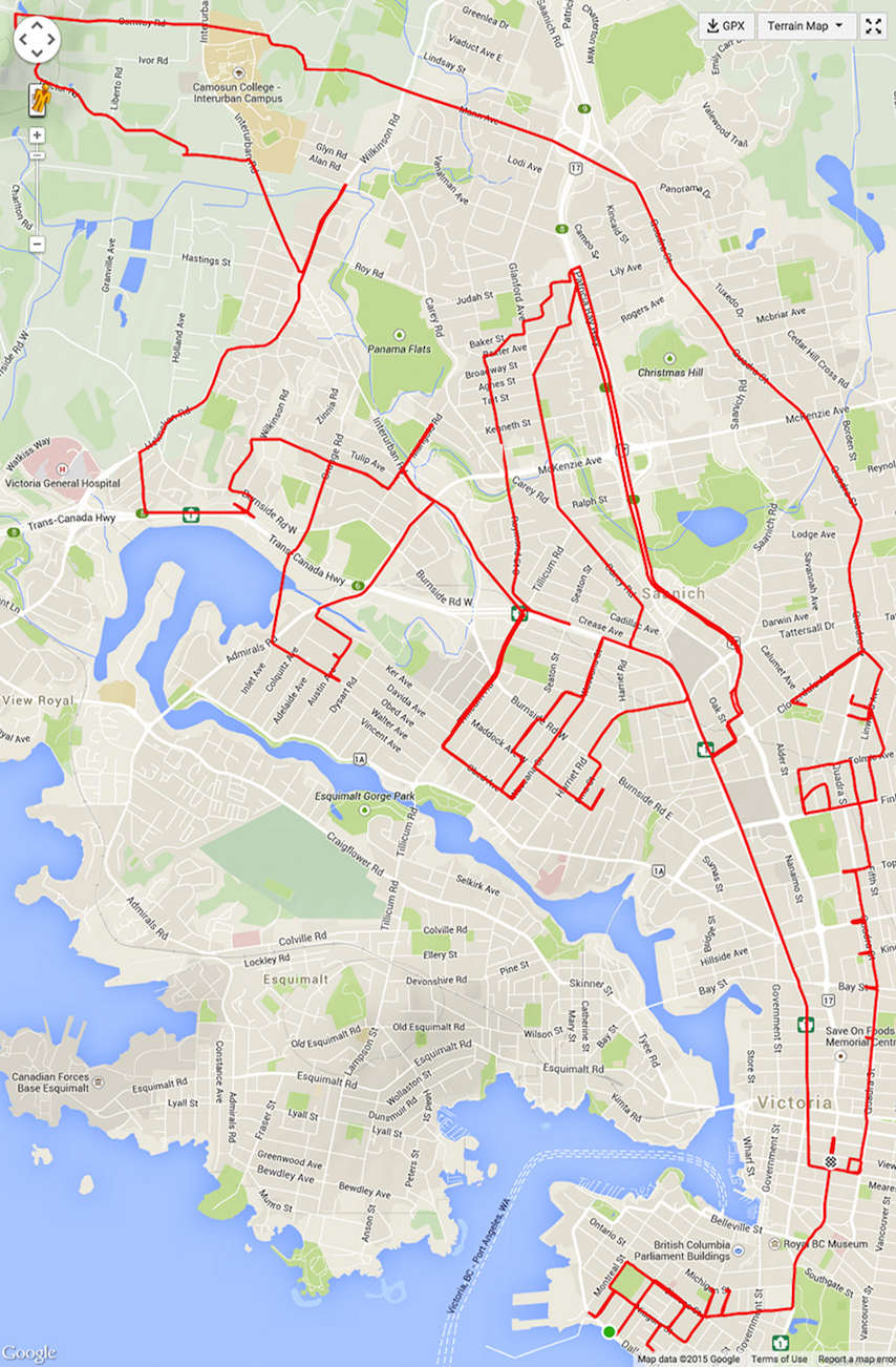 An ant in James Bay and an anteater in Victoria and View Royal. Entitled Fine Dining in James Bay. GPS Cycle Art copyright Stephen Lund.