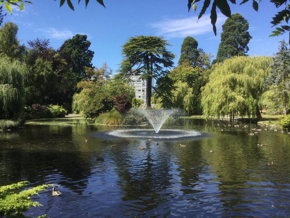 Goodacre Lake fountain in Beacon Hill Park.