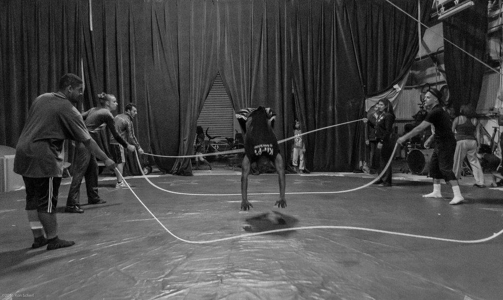 CircusBella-1642.jpg